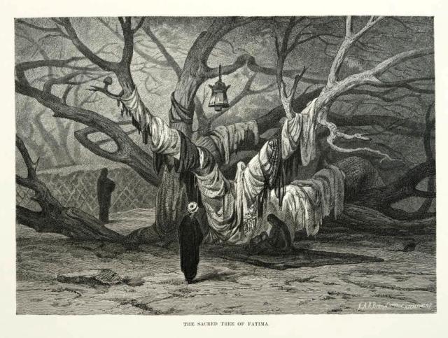 Sacred Tree of Fatima