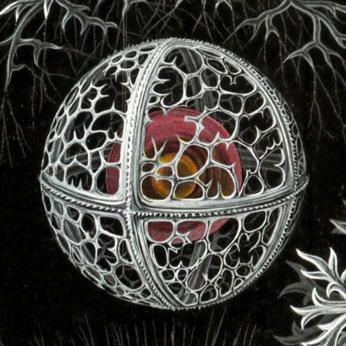 Stephoidea [detail] - from Ernst Haeckel's Kunstformen der Natur (1904)