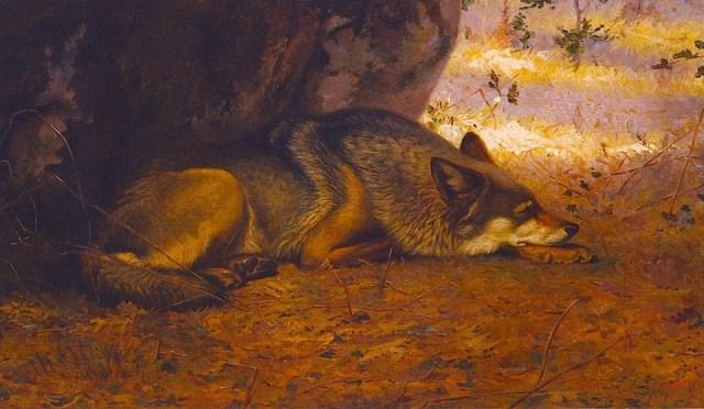 Ernest Thompson Seton - The Sleeping Wolf (1891)
