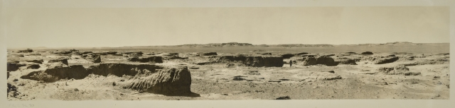 gobi-landscape-archive-central-asiatic-expedition