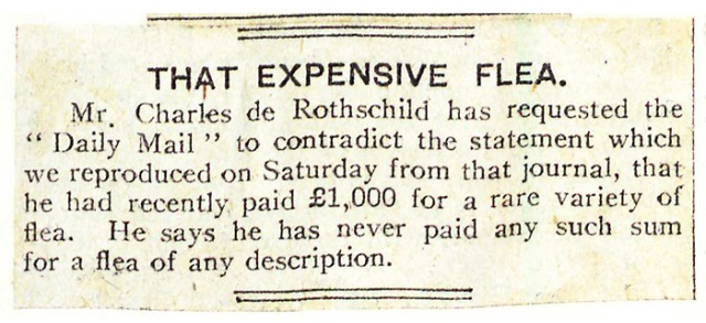 Rothschild Flea Denial (1914)