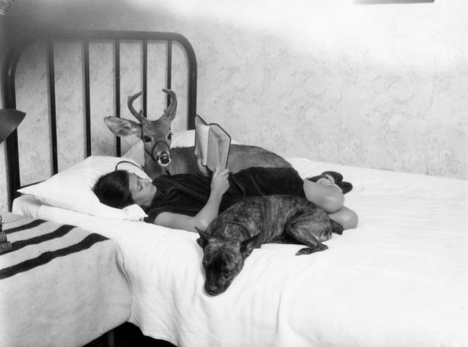 Betty Bradley and her pet deer, Bennie (1927)