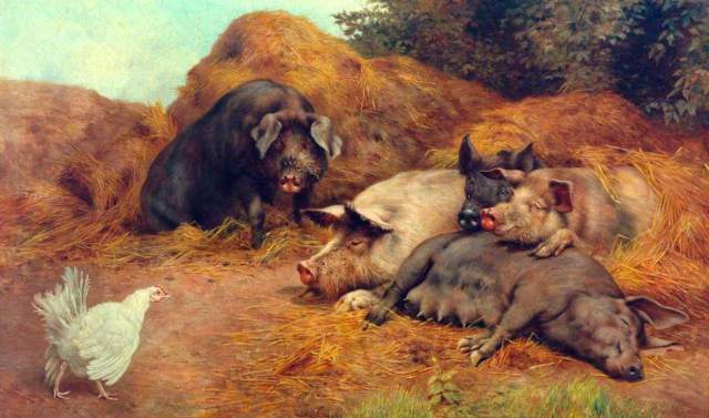 William Weekes - Pigs Disturbed by a Hen (c. 1890)