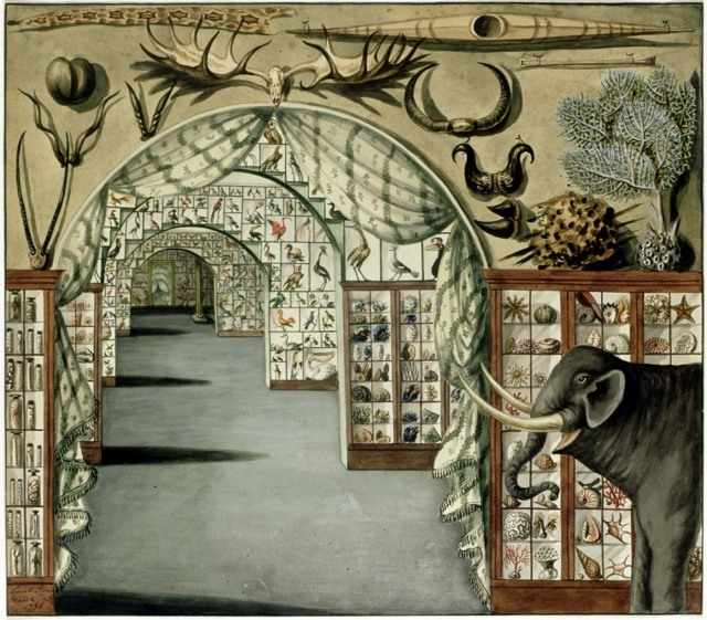 Sarah Stone - Perspective interior view of Sir Ashton Lever's Museum in Leicester Square, London March 30 1785