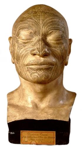 Alexandre Pierre Marie Dumoutier - plaster cast of Matua Tawai, a New Zealander of Ikanamawi (1838)