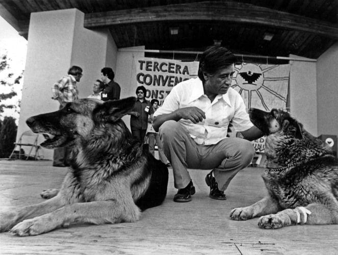 Cathy Murphy - Cesar Chavez, Dogs (mid 1970's)
