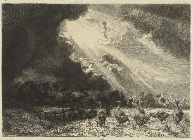 Félix Bracquemond - Landschap met naderende onweersbui en ganzen in weide - La Nuée d'Orage (1860 - 1870)