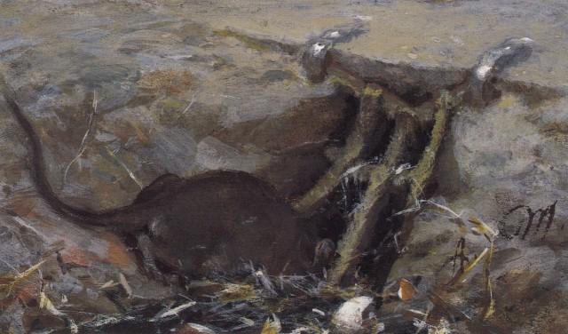 Adolph Menzel - Die Ratte im Rinnstein (c. 1863-1883)