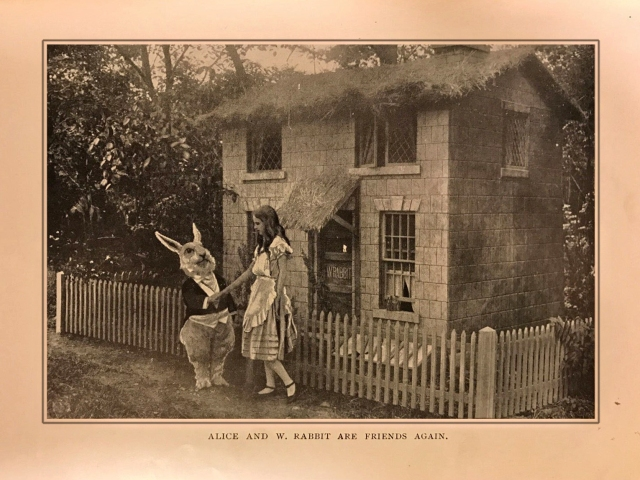Alice and W Rabbit Are Friends Again - Photoplay Edition (1919)