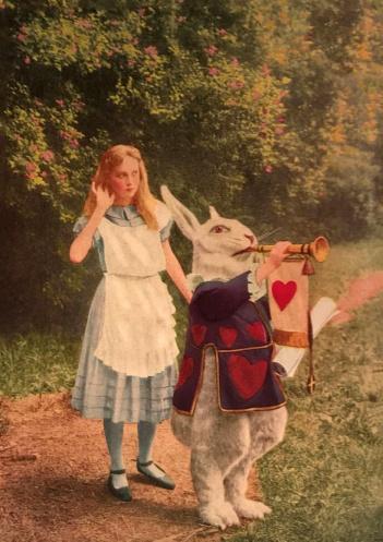 Photoplay Edition - Alice in Wonderland (1919)